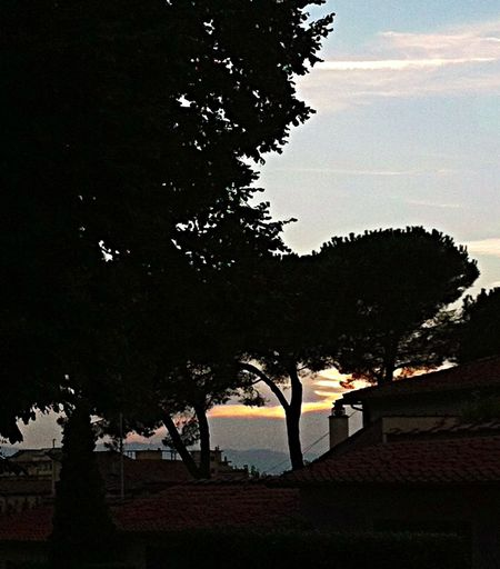 Slowly....the night! Sunset The Moment - 2014 EyeEm Awa The Environmentalist – 2014 EyeEm Awards The Explorer - 2014 EyeEm Awards