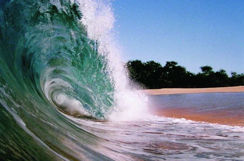 Beauty In Nature Clear Sky Day Flowing Water Force Hitting Land Motion Nature No People Ocean Waves Outdoors Plant Power Power In Nature Sea Sky Sport Surfing Tree Water Waterfront Wave Wave Beach Wave Hawaii