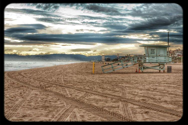 Being A Beach Bum Sea Life Is A Beach On The Beach
