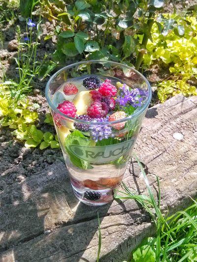 Detox Time Chilling ✌ Water Blackberries Wild Strawberries Raspberries Cherry Lemon Mint Levander