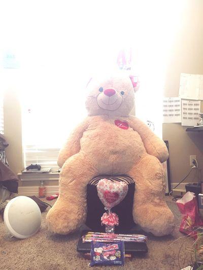 I think I did good this year Valentine's Day  Love Loveher ♡ Bigbear Stuffed Stuffedanimal