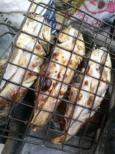 toast fish