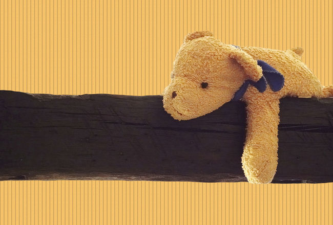 Blue Ribbon Bright Colors Childhood Cuddly Toy Cuddly Toy Lying On Wooden Beam Day Horizontal Lines Indoors  Laziness Low Angle View No People Relaxing Stuffed Toy Sunlight Teddy Bear Toy Dog Vertical Lines Wooden Beams Yellow Background Paint The Town Yellow