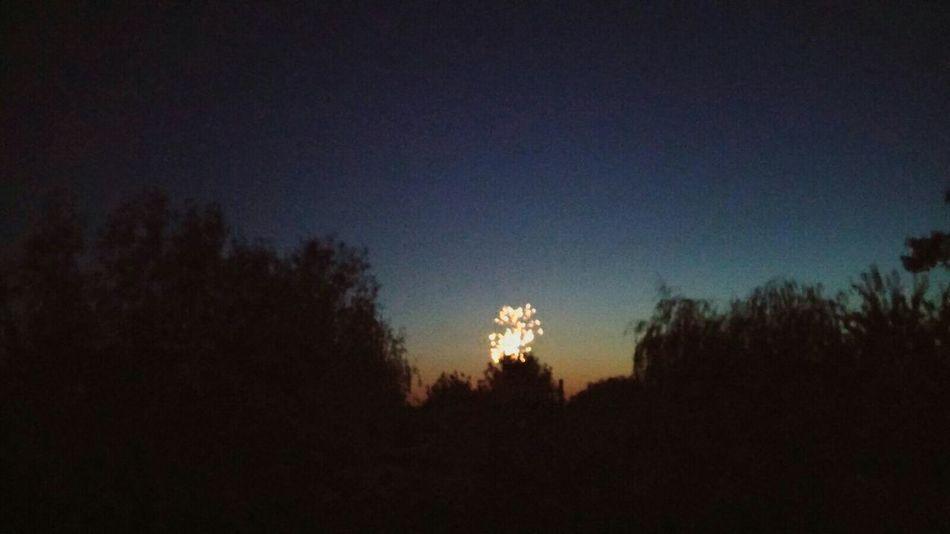 Fireworks Fireworksnight Littlefirework