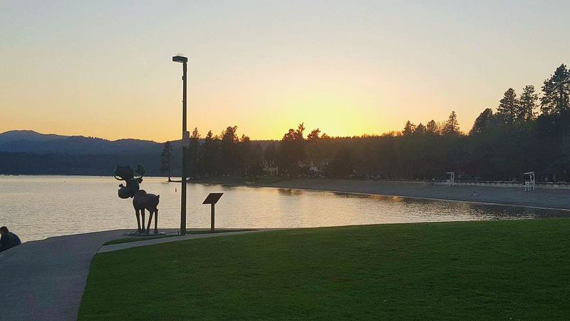 The beautiful Coeur d'Alene Beach with a moose in the foreground. Coeur D'alene Resort Lake View Lake Beach Landscape Family Park Swimming Beach Lake Front First Eyeem Photo