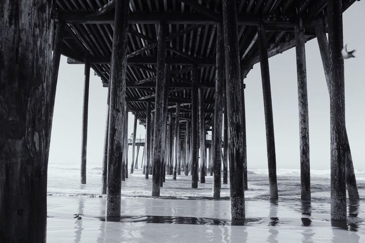 Beach Sea Pier Water Day Built Structure Bridge - Man Made Structure No People Nature Sky Horizon Over Water Underneath Architecture Below Outdoors Architectural Column Beachphotography Beach Photography San Luis Obispo Pismo Beach Sand Blackandwhite Black And White Black & White First Eyeem Photo EyeEmNewHere The Secret Spaces EyeEmNewHere