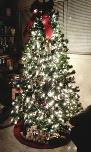 Christmas Tree Merry Christmas! Beautiful Christmas Christmas Spirit Happy Holidays! Christmas Lights Christmas Decorations Christmastime Christmastree Christmasspirit