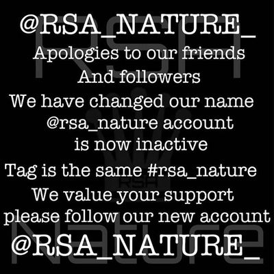 our friends and colleagues of rsa_nature has a new account name: rsa_nature_ !! please support and follow their new account! thank you! ✌✌ Daybestpict_bw Black_white Black And White Rsa_bnw Bw_lover Blackandwhiteonly Bws_worldwide Ig_snapshot Bw_love Bestshooter Bnw_society Blackandwhitephoto Bw_lovers Eclectic_bnw Irox_bw Bnw_demand Insta_bw Award_gallery Insta_pick_bw Bnw_captures Ic_bw The_bestbw Royalsnappingartists Most_deserving_bw Bw_shotz Igworldclub