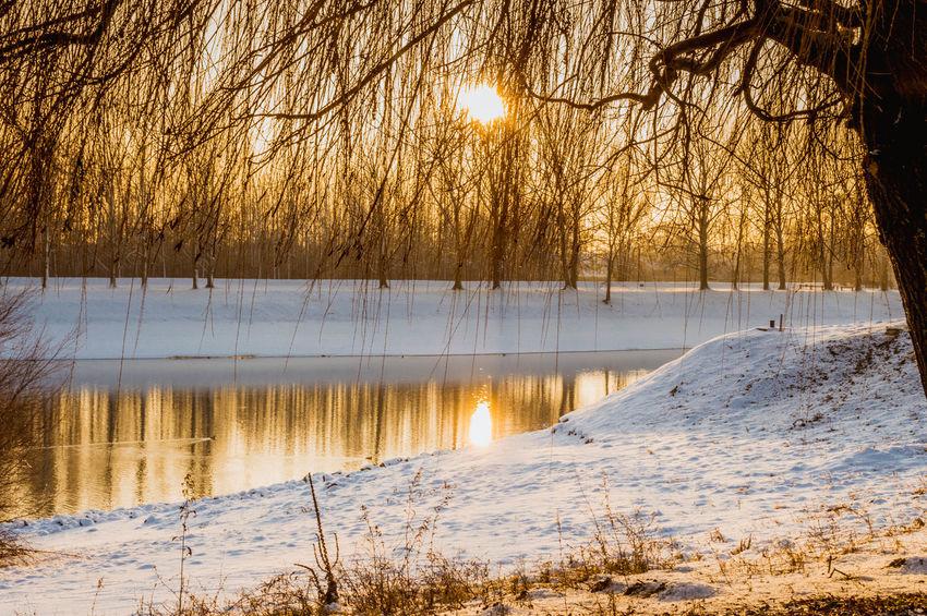 Winter Ice River Ship Snow Sun Sunrise Water Winter