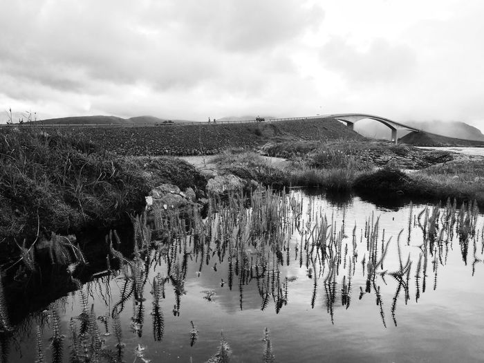 Wet, windy and cold, typical summer in Norway Agriculture Atlantic Atlantic Road Beauty In Nature Bikes Blackandwhite Bridge Cars Close-up Cloud - Sky Day Field Focus On Foreground Growth Landscape Landscape_Collection Monochrome Nature Norway Ocean Outdoors Plant Scenics Sky Water