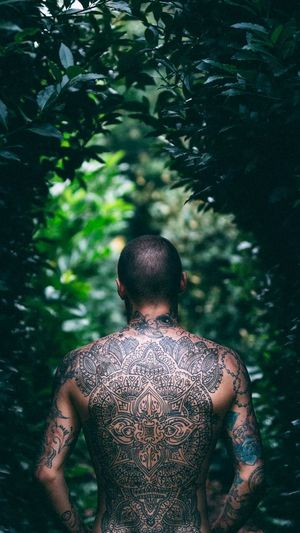 Rear View Of Shirtless Man Standing By Trees