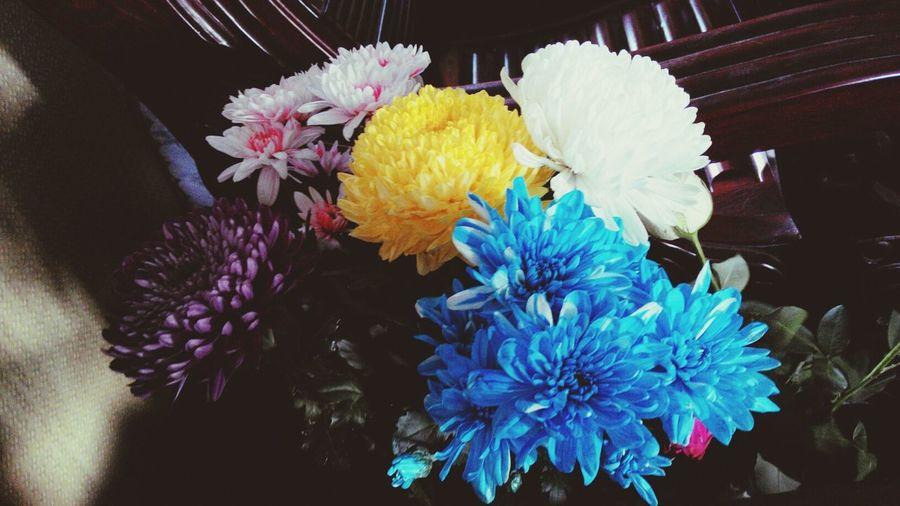 Fresh flowers for eid!