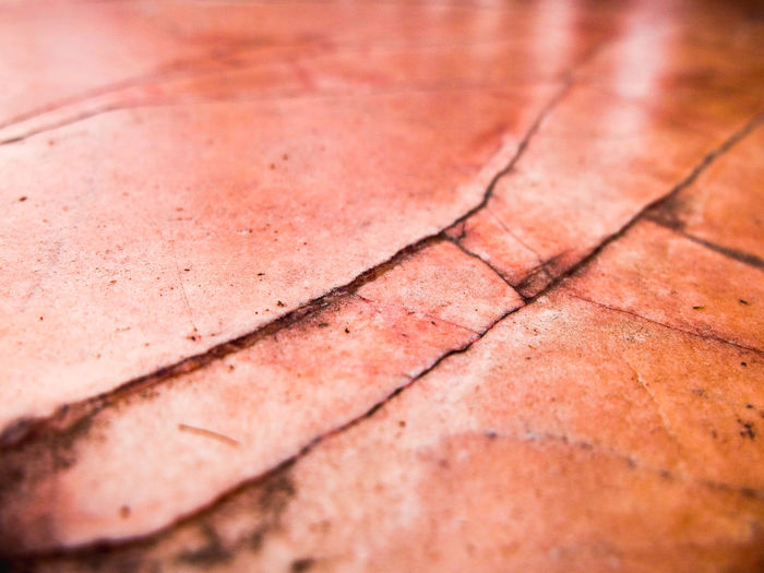 Abstract Close-up Detail Floor Focus On Foreground Marble Pink Color Salmon Colored Seam Selective Focus Vein