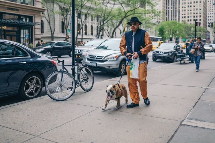 The Street Photographer - 2017 EyeEm Awards Dog Only Men One Man Only Pets One Animal Car City City Life Adults Only Full Length Adult One Person Men Communication Day People Transportation Outdoors Technology Sitting