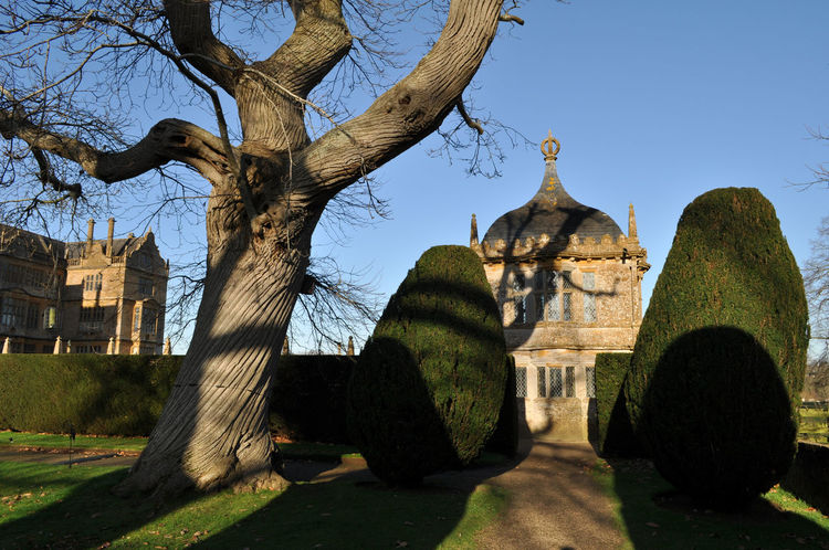 Architecture Blu Sky Building Exterior Country House Day Ham Stone Montacute House No People Outdoors Tree Elizabethan