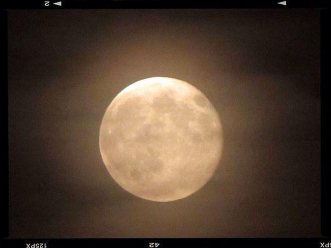 Dillo alla luna!!