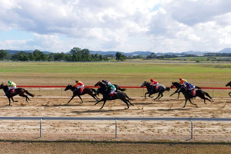 Adult Australia Australia & Travel Australian Sports Competition Day Derby Domestic Animals Gambling Horse Horse Racing Horserace Horseracing Horses Jockey Mammal Outdoors People Sky Speed Sportbet Sports Race Sports Track