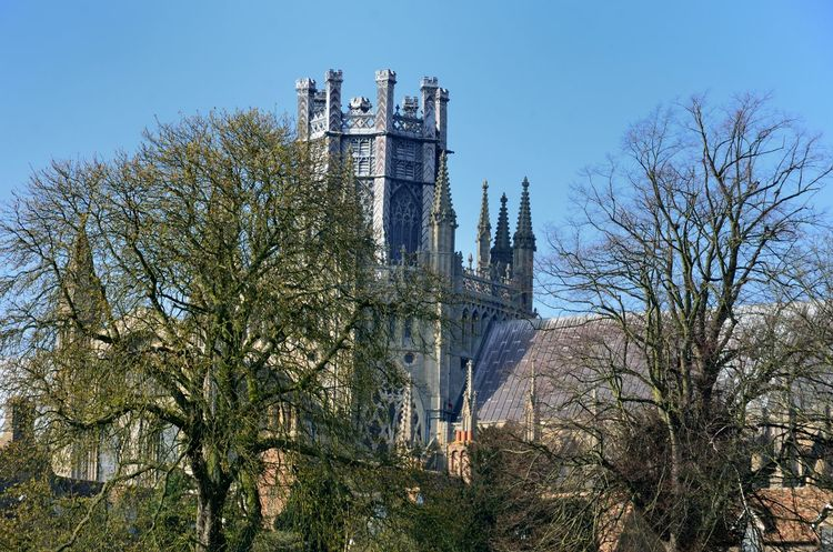 Ely Cathedral with trees in front Architecture Building Exterior Built Structure Cambridgeshire Cathedral Ely Fenland Fens Gothic Norman Outdoors Religious