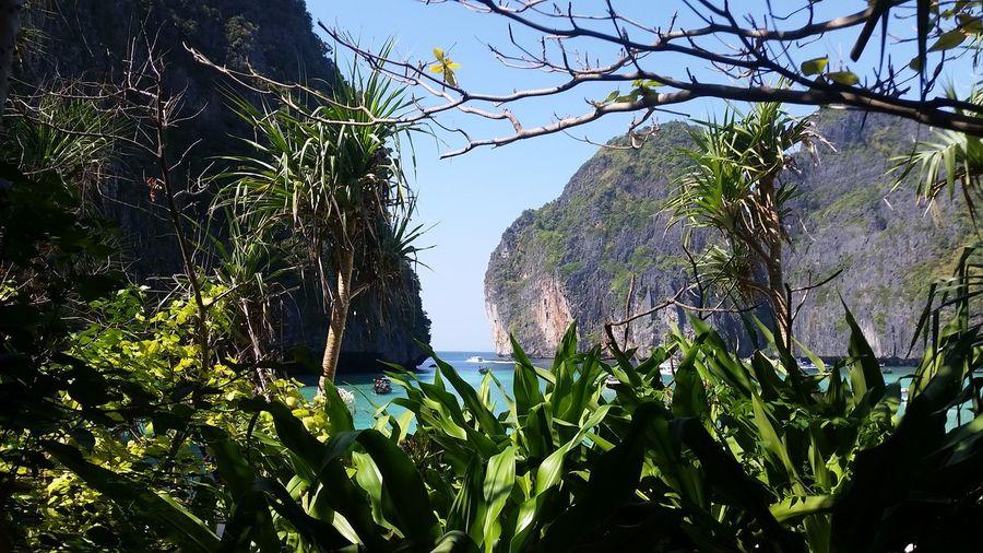 James Bond Island Tourism Travel Destinations Vacations Thailand Sand Sea Maya Bay Montagnes Thaïlande Iles  Mer Ciel Montains