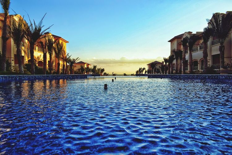 Egypt Egyptian Culture Egyptphotography Red Sea Sokhna This Is Egypt ❤ Beauty In Nature Horizon Over Water Swimming Pool Swimming Tree Sunset Refraction Waterfront Water Surface Standing Water