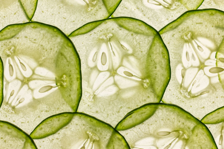thin slices of cucumber lit from behind Back Lit Backgrounds Close-up Cucumber Food Food And Drink Freshness Full Frame Green Color Healthy Eating Light Table No People SLICE Thin Slices Translucent Transparent Vegetable Wellbeing
