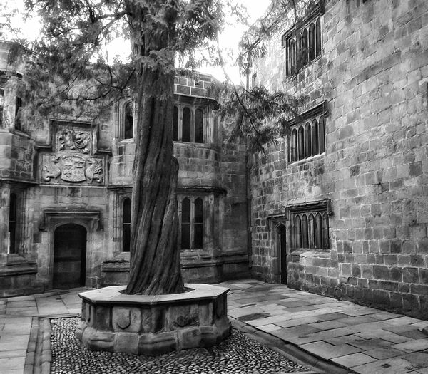 Skipton town centre a lovely place to visit with a nice castle in the town and some lovely countryside all around itSkipton Castle Castle View  Castle Courtyard View Courtyard  Skipton Portrait Photography Hdr_Collection HDR See The World Through My Eyes Eye For Photography Fujifilm No People Black And White Collection  Monochrome _ Collection Black And White Creative Light And Shadow Architecture_bw Architectural Feature Architecture Detail Old But Awesome Old Buildings Castle Architecture