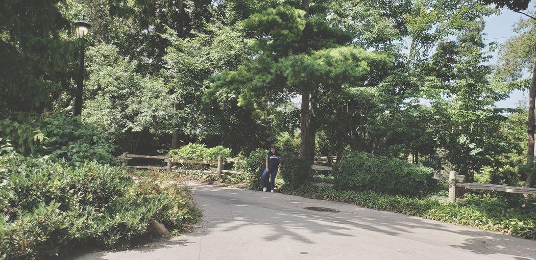 Tree Men Road Full Length Walking Sky