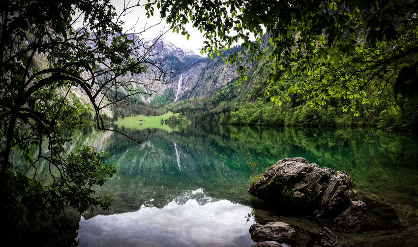 Scenic view of lake and mountains at forest