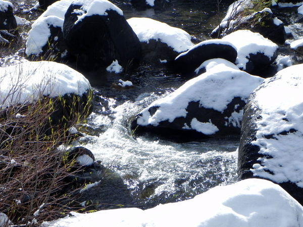 Beauty In Nature Close-up Cold Temperature Day Nature No People Outdoors River Snow Snow Covered River Rocks Water Winter