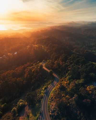 High angle view of road amidst trees during sunset