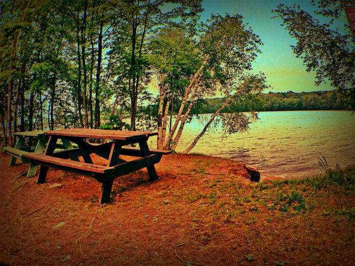Picnic tables by lake. Outdoors Summer Spring Trees Lake Water Sky Picnic Table Picnic Tables