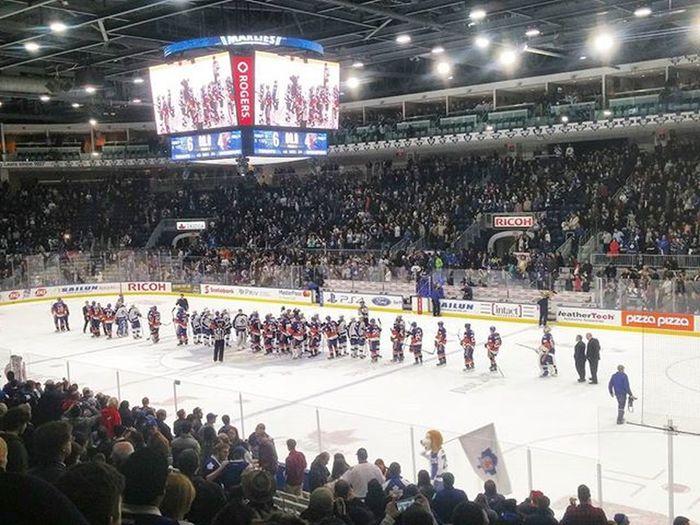 Toronto Torontomarlies Marlies Hockey Hockey Game Hockeyphotography Hockeylife Ahl Bridgeport  Sports
