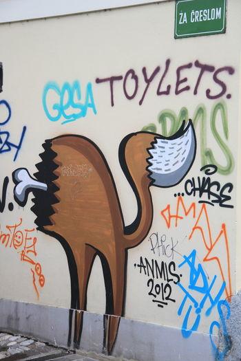 Architecture Bones Graffiti Half Cat Street Art Graffiti Streetart Wall