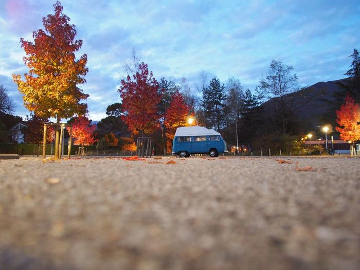 Tree Sky Outdoors Nature No People Surface Level Illuminated Architecture Camper Twilight Low Angle View Rv