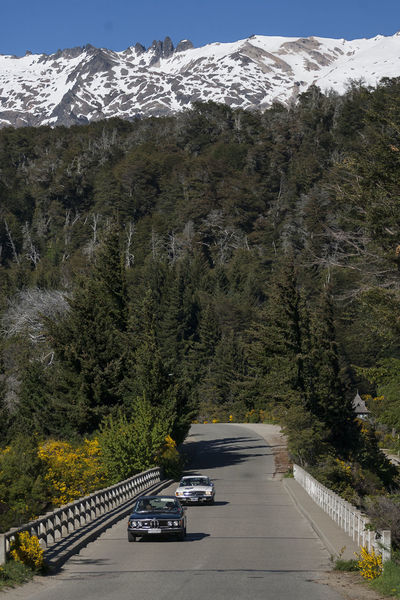 1000 miles sport 1000milechallenge Argentina Argentina Photography Argentino Bariloche Citytour Bariloche, Argentina Barioche Beauty In Nature Car Circuitochico Classic Classic Car Day LlaoLlaoHotel Mode Of Transport Mountain Nature No People Outdoors Road Sky Sunlight The Way Forward Transportation Tree