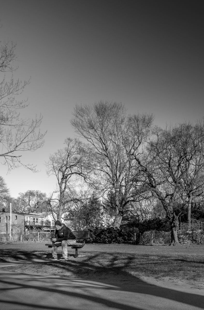 tree, sky, architecture, building exterior, built structure, transportation, bare tree, plant, clear sky, no people, nature, building, house, road, day, city, street, outdoors, residential district, copy space