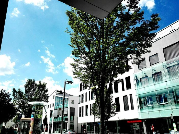 Tree Outdoors Cloud - Sky Sky Architecture No People City Built Structure Building Exterior Huawei P8lite Memories MarcoPerspectives InFinity Flame Façade Standing Marco Perspectives City Icd/10resistance Changenotes Day Huawei P8 Lite On The Way Yeah Business Finance And Industry Promode Myyearmyview MarcoPhotographie