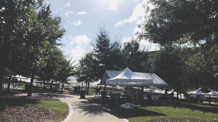 Auburn University WarEagle