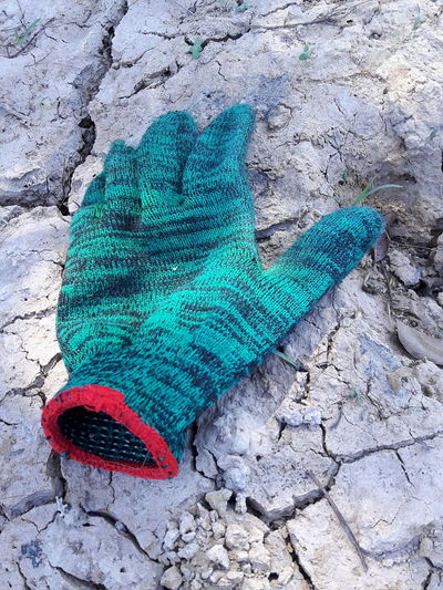 Where is my buddy? Close-up Glove In The Garden Buddy Green Glove Closeupshot High Angle View Day Outdoors No People Nature Animal Themes