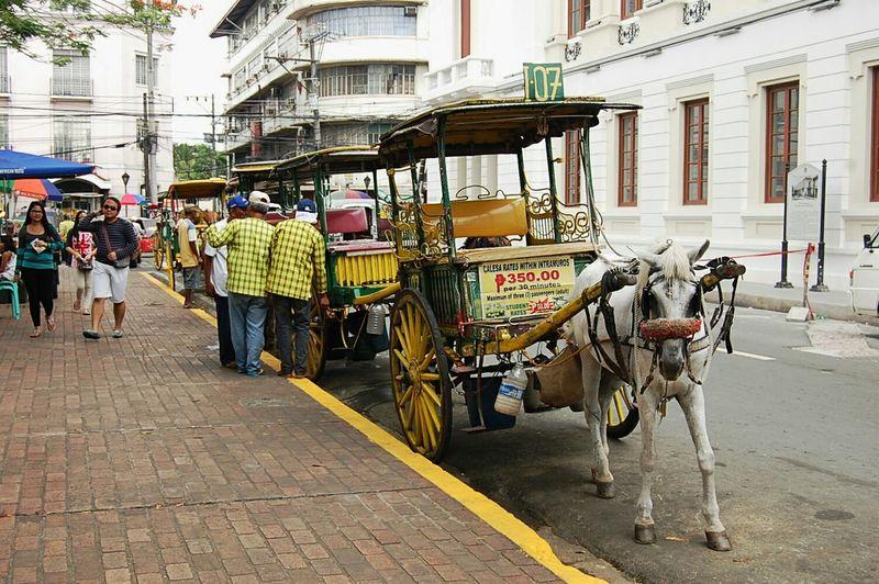 Dose of Spanish in Modern Manila Color Of Life Roadside City Street Walking Architecture Horses Spanish Manila, Philippines EyeEm Phillipines Everyday Lives Work Newbie