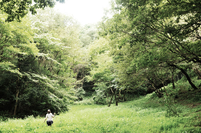 Day Forest Girl Green Color One Person Outdoors Tree Woods