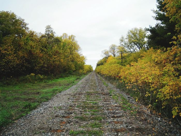Railroad track amidst trees against sky during autumn