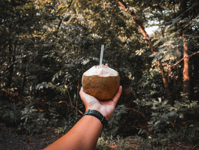 Midsection of person holding coconut