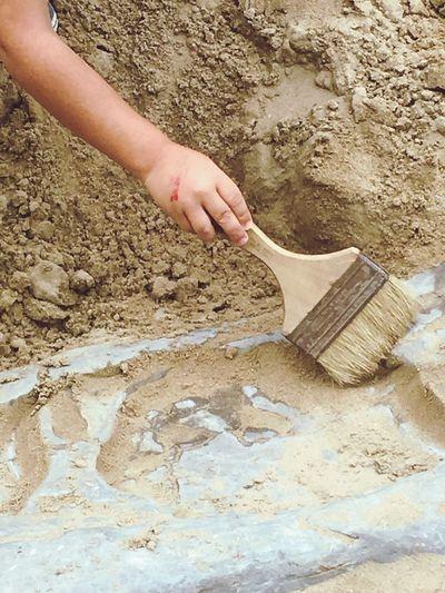 Jr. paleontologist at work ! Cedar Point Dinosaur Alive Dinosaur Family❤ Family Time Holidays ☀
