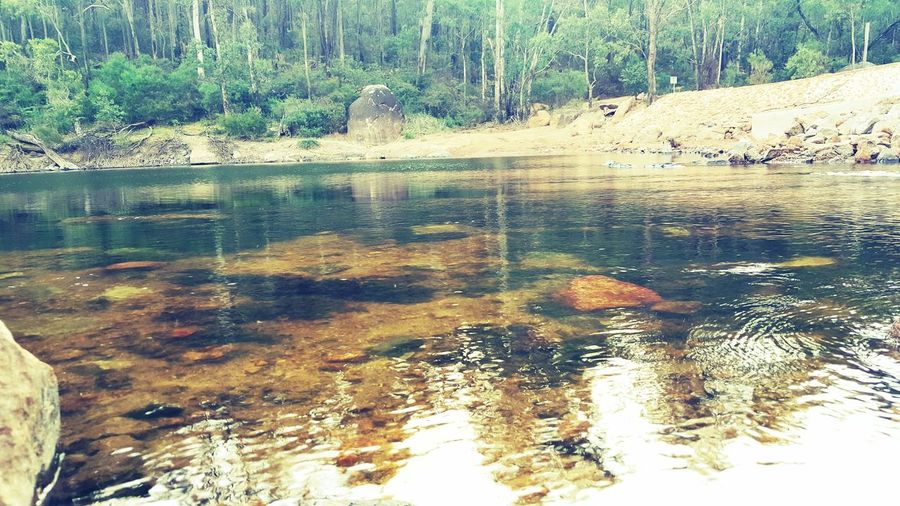 Nature Day Water Outdoors Beauty In Nature Lake No People Tranquility Scenics Beach River Bush Forest Dwellingup AndroidPhotography Australian Photographers Android Photography Reflections In The Water Australian Bushland Sunburnt Country Landscape Australian Landscape Agriculture Rural Scene Destination