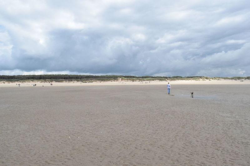 Beach Life Birds Camarthen Castle Dogs Family Landscape Watersports