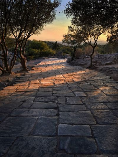 Brick road of Athens Tree The Way Forward Nature Scenics Tranquil Scene Outdoors Tranquility No People Sky Beauty In Nature Sunset Stone Tile Landscape The Week On EyeEm Tourism Brick Road Bricks Sunset Golden Hour Road Marking Road Turn Athens, Greece Landscape Trees Day