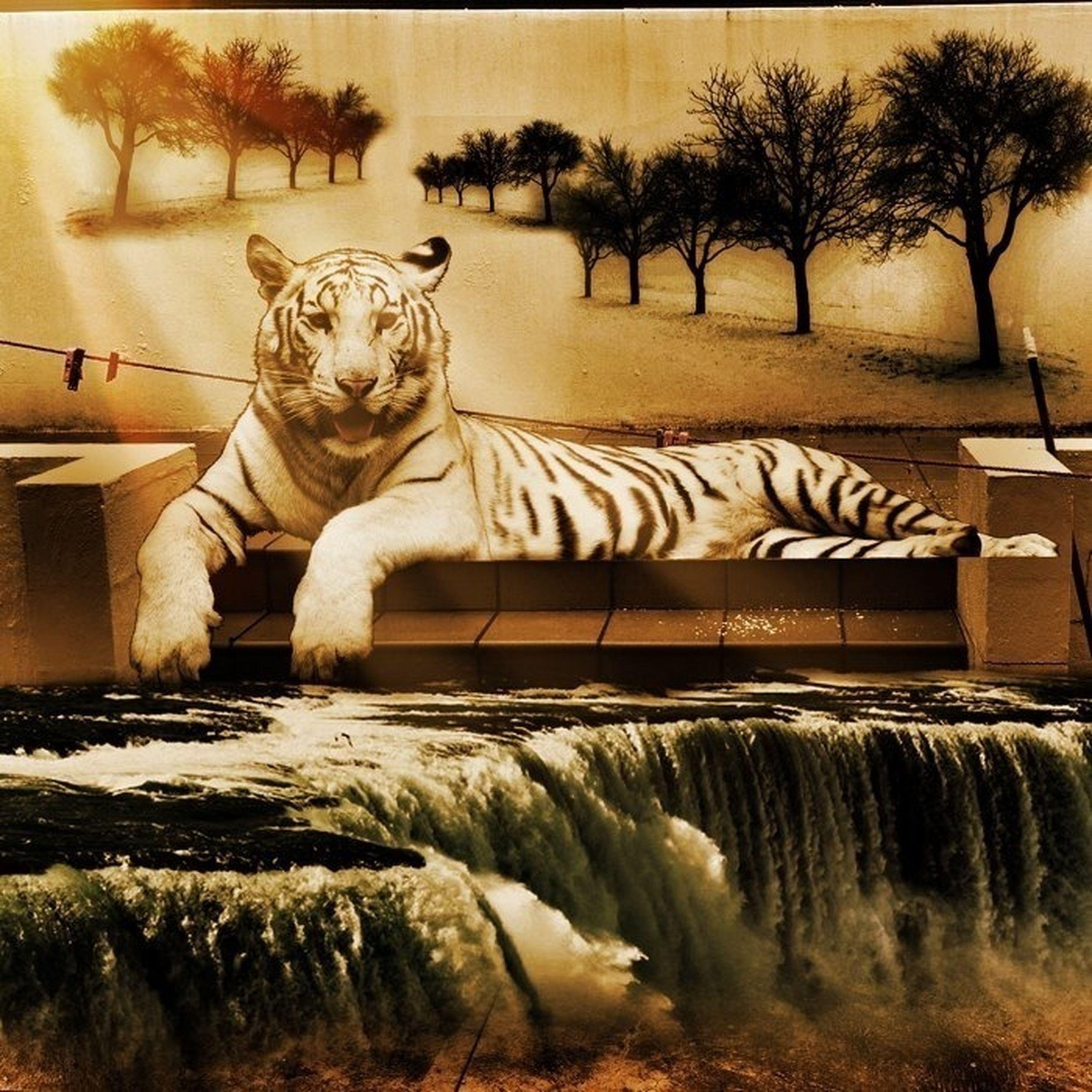 animal themes, tree, art and craft, art, mammal, safari animals, creativity, wildlife, zoo, animals in the wild, sculpture, zebra, animal representation, herbivorous, horse, palm tree, built structure, outdoors, two animals, standing
