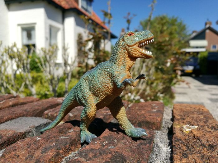 T REX T Rex Attack Tyrannosaurusrex Dragon JurrasicPark EyeEm Selects Adventures In The City Sunlight House Shadow Animal Themes Building Exterior Close-up Dinosaur