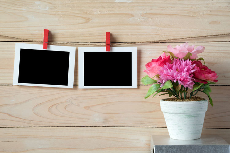 Instant Print Transfers Hanging Against Wall With Flowering Plant On Table